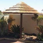 premier-african-cape-reed-tiles-supplier-wa